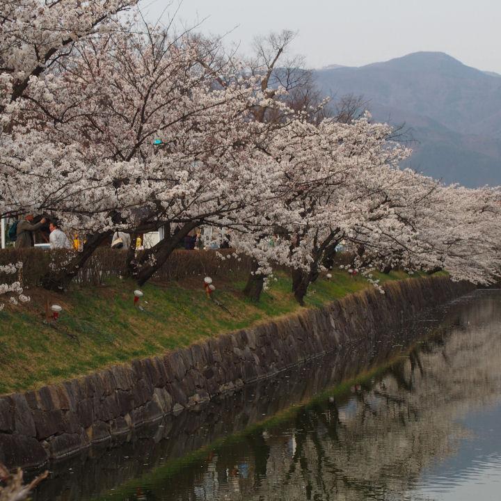 松本城-OMD52250