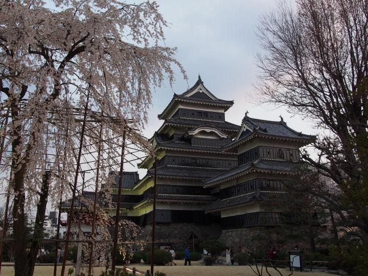 松本城-OMD52261