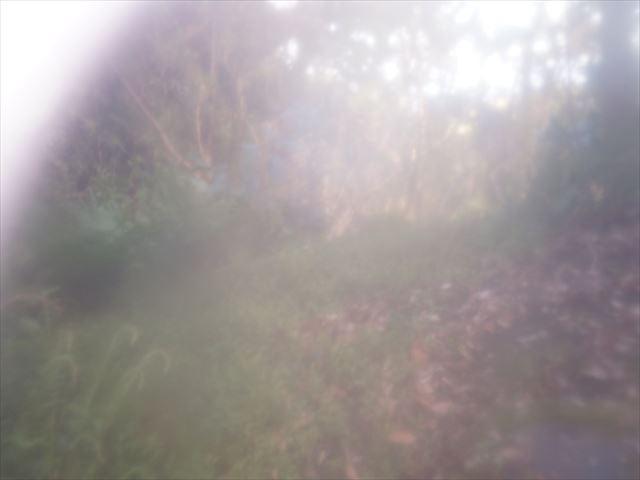 DSC03857_R_20140401212116140.jpg