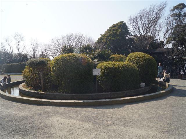 DSC04179_R.jpg