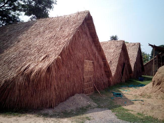 キノコ小屋。