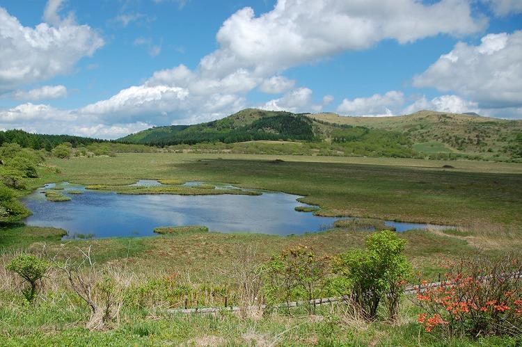 八島湿原0400-140614-02