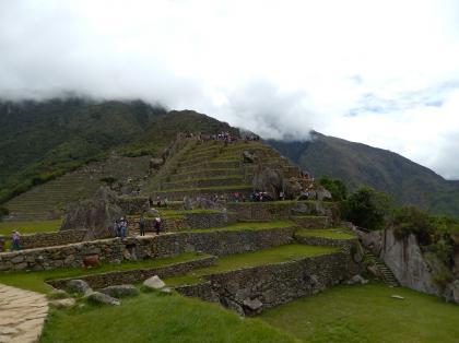 ペルー2014.1マチュピチュ・アンデネス