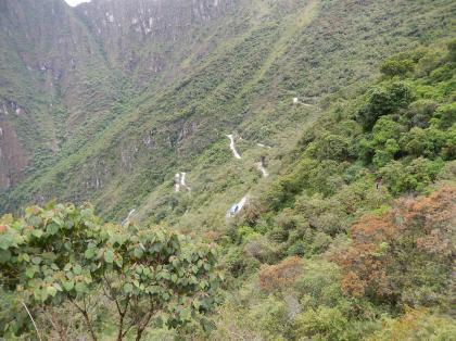 ペルー2014.1マチュピチュ・バス道