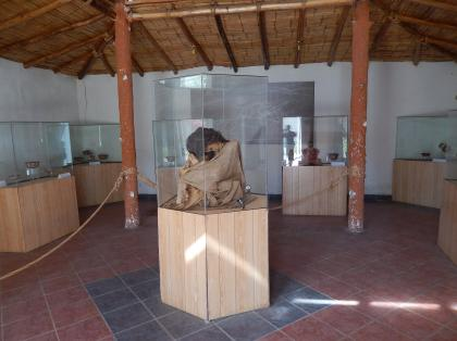 ペルー2014.1ナスカ地上絵(博物館)