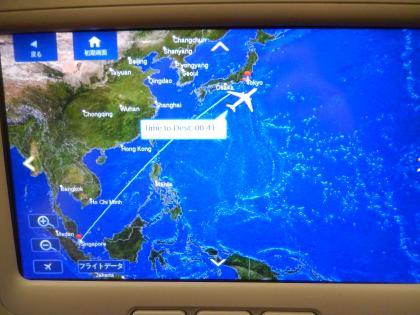 シンガポール2014.2デルタ航空成田行