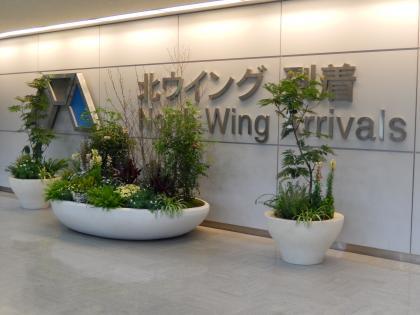 シンガポール2014.2成田空港帰国