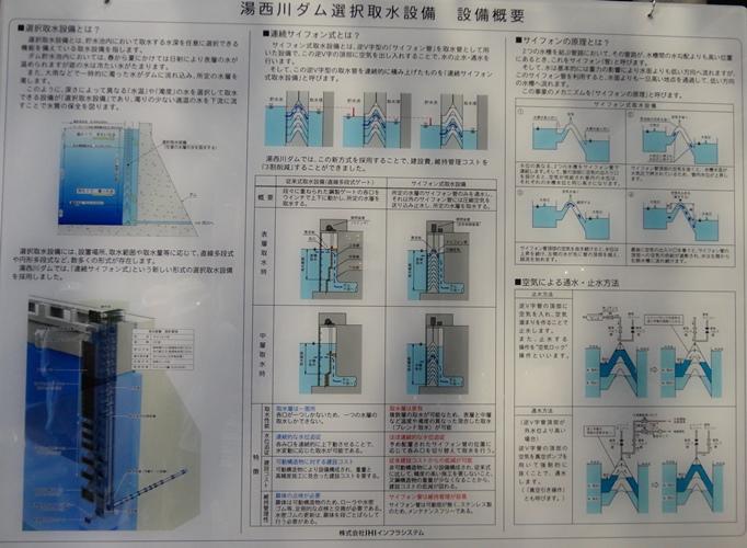 DSC03271.jpg