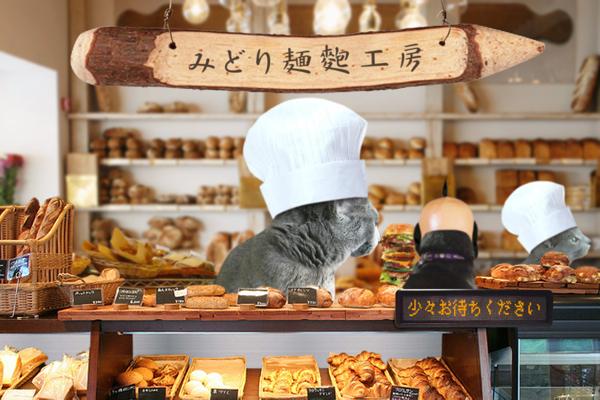 パン屋11