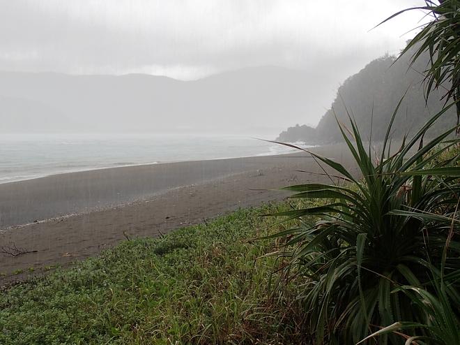 奄美雨の海岸
