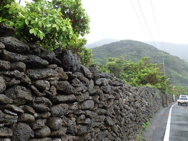 サンゴの石垣