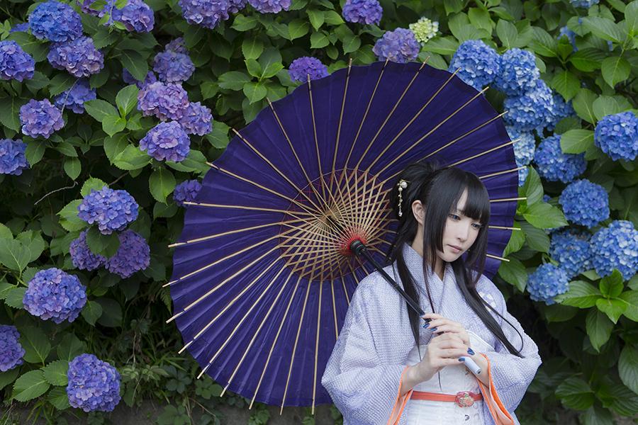 紫陽花_04