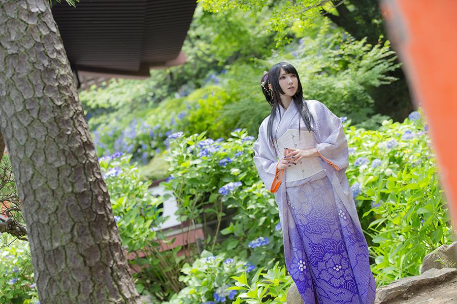 紫陽花_02