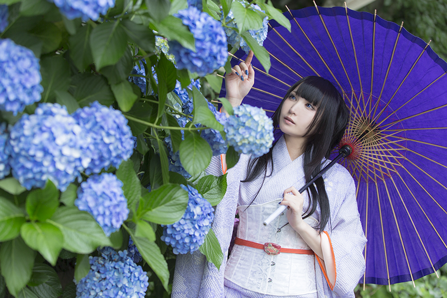 紫陽花_03