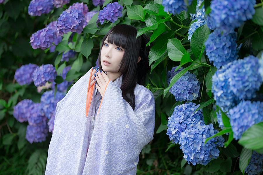 紫陽花_08