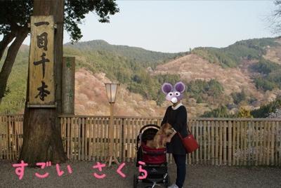 fc2blog_2014041222454587e.jpg