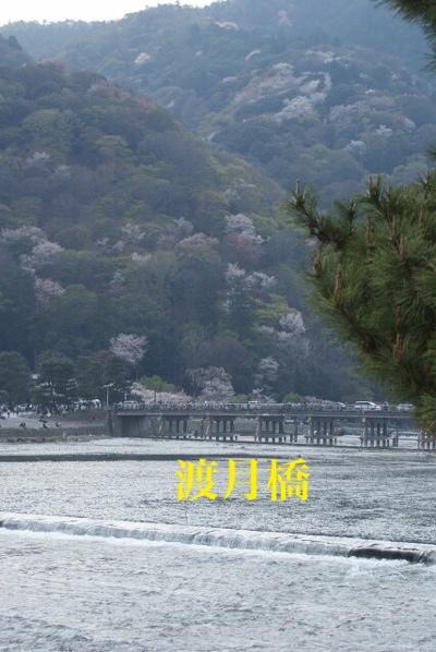 fc2blog_20140413161125dfc.jpg