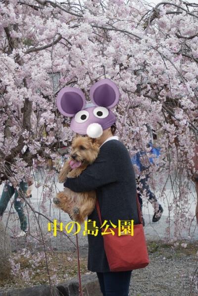 fc2blog_20140413161455bc9.jpg