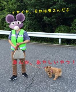 fc2blog_20140608225847e97.jpg
