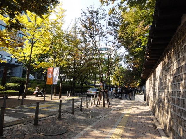 2013年10月30日 徳寿宮キル 秋の風景