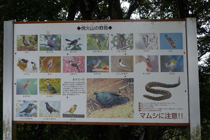 隠岐 焼火神社 西ノ島  5
