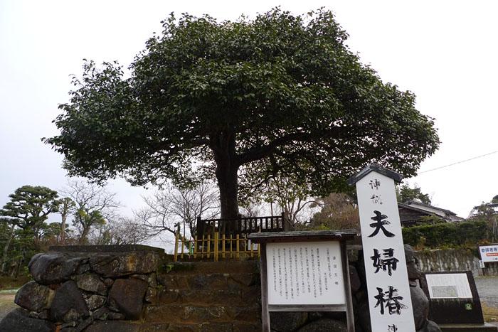 八重垣神社 島根県 1