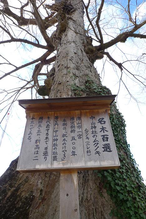 中山神社 岡山県  2