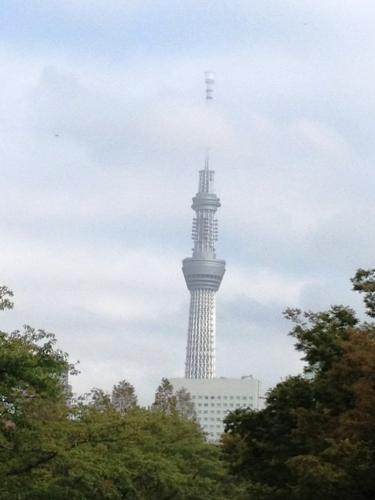 20121005001-1.jpg
