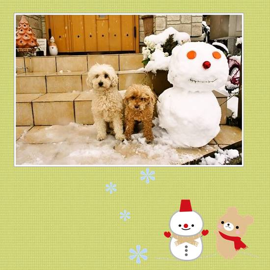雪2014-3