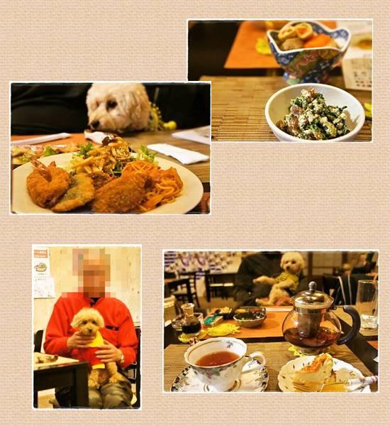 20140329180618b50.jpg