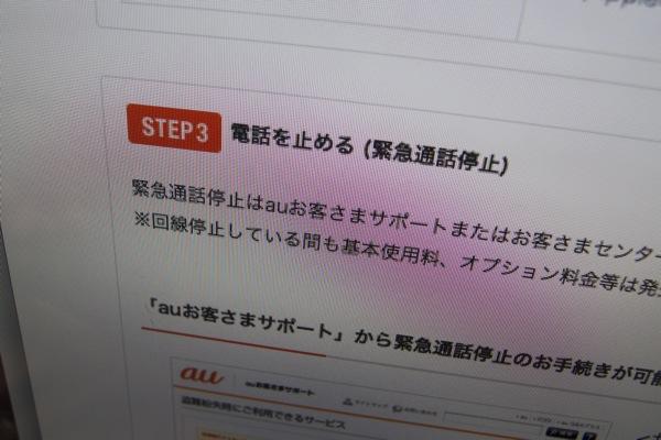 P7300128.jpg