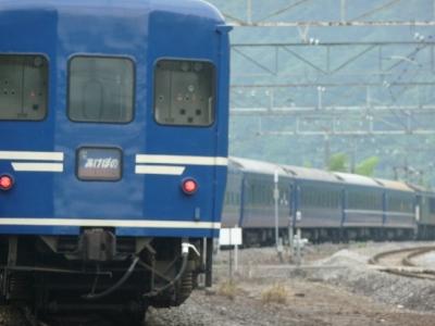 P1060754.jpg