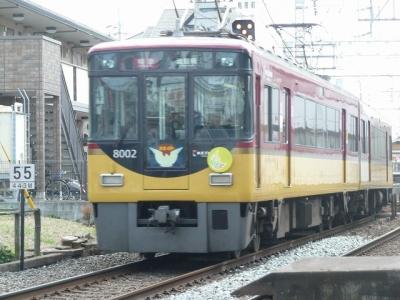 P1090033.jpg