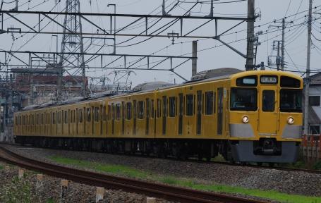 DSC_7562_SP0001.jpg
