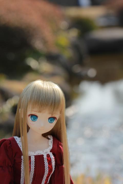IMG_6537.jpg
