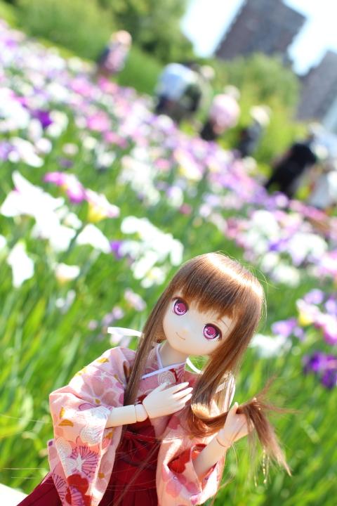 IMG_7764.jpg