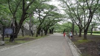 20140812tohoku-009.jpg