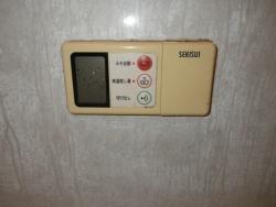 IMGP3620.jpg