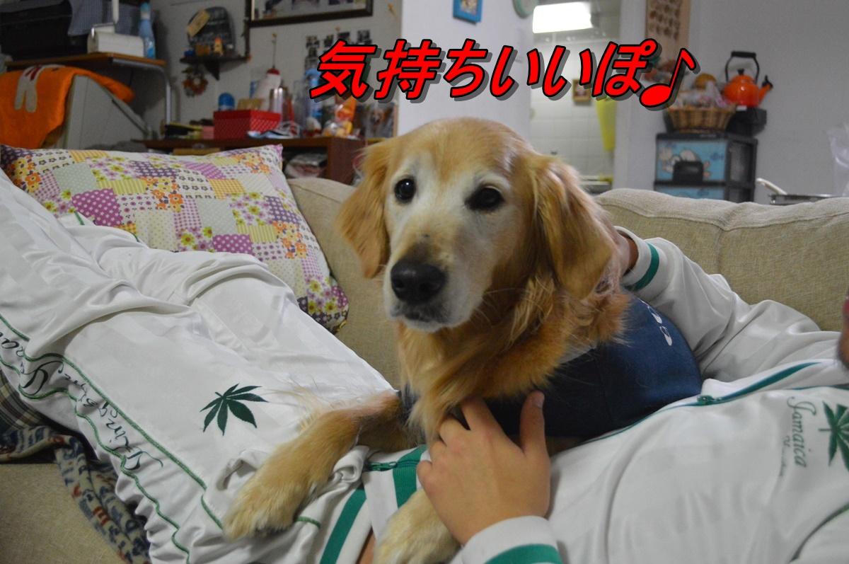 DSC_2253_201402210054001e4.jpg