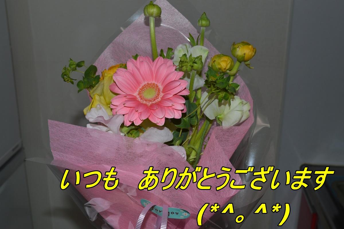 DSC_2609_201403122049536e0.jpg