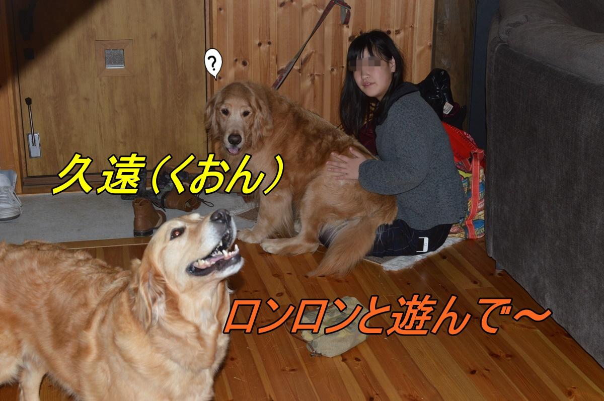 DSC_2719_2014032421280369b.jpg