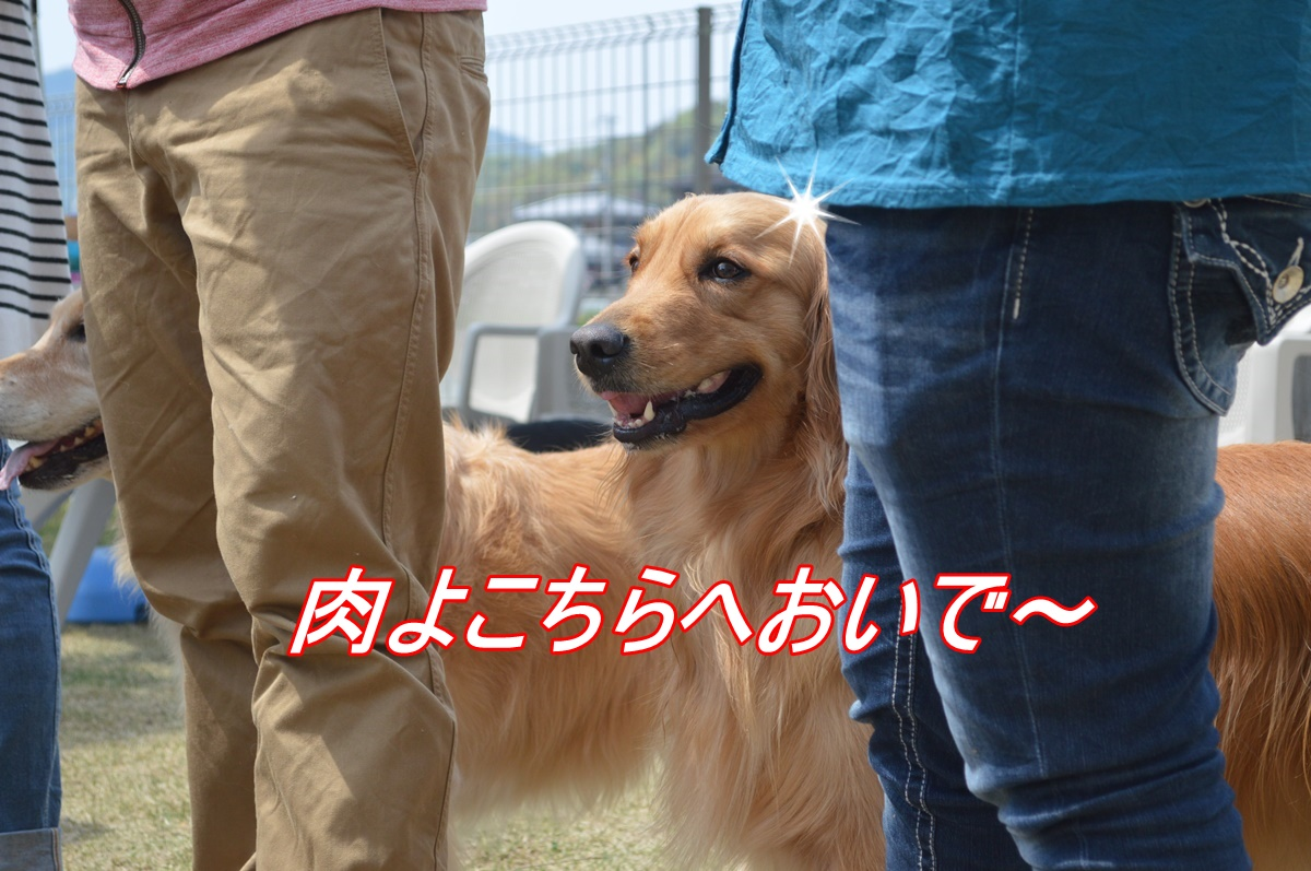 DSC_3358.jpg
