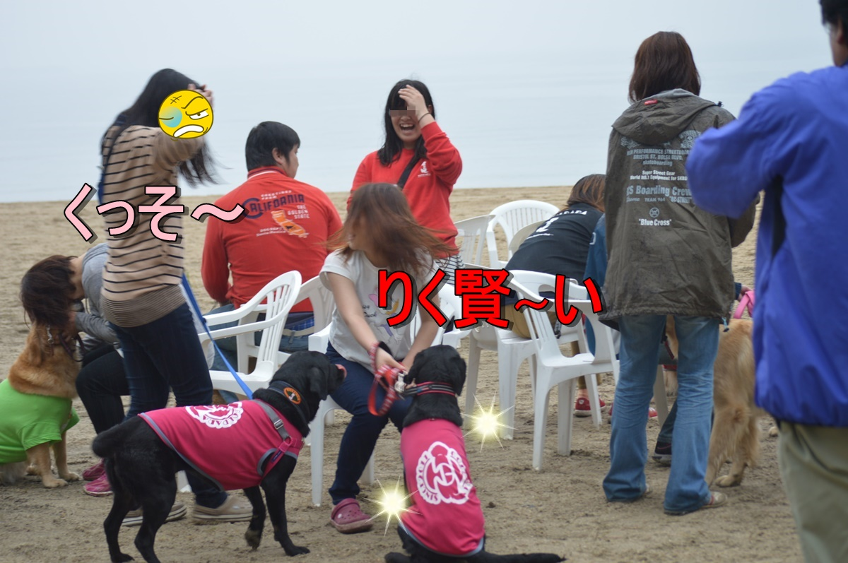 DSC_3739.jpg