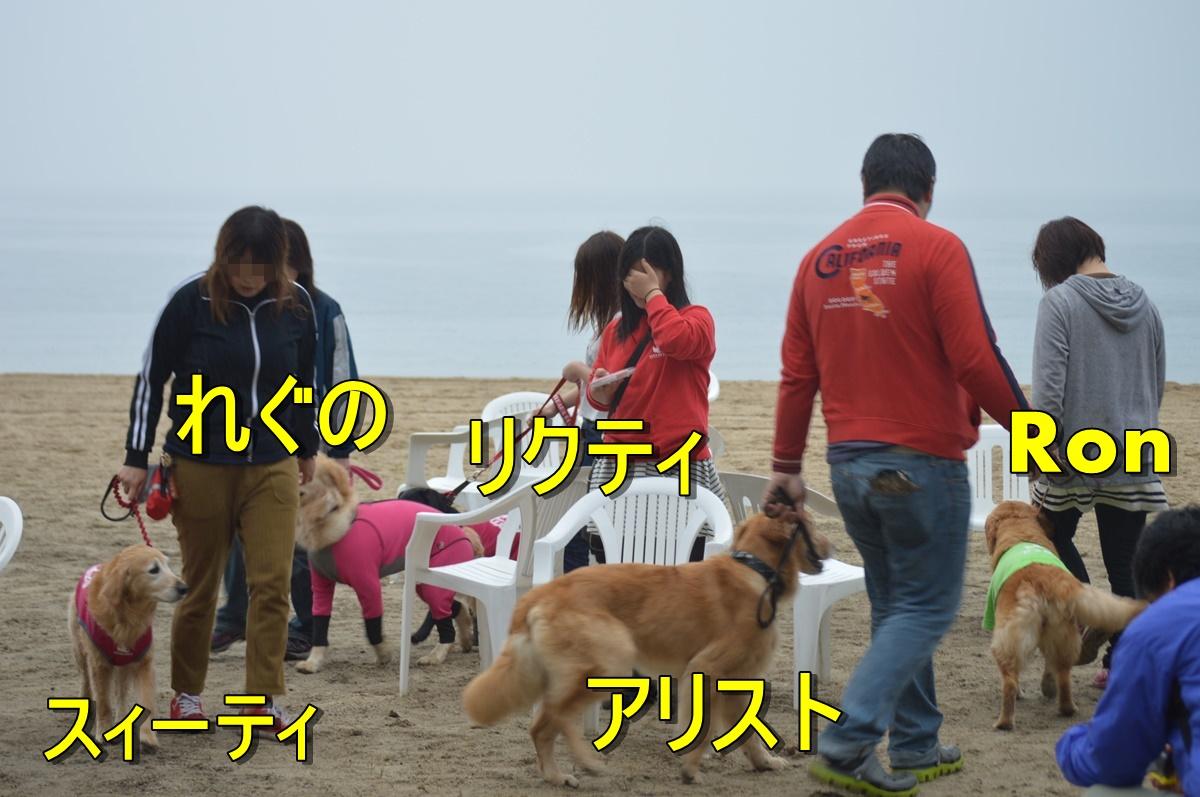 DSC_3743.jpg