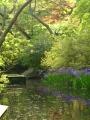 2014年5月3日。根津美術館の庭園にて。