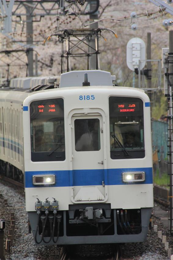 60D_9116_4.jpg