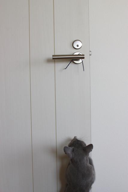 ドアのそば