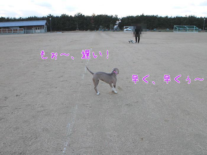 20140222120240e59.jpg