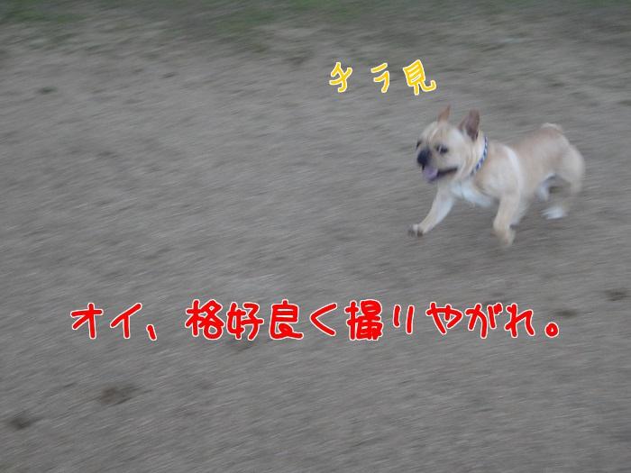 20140405235316038.jpg