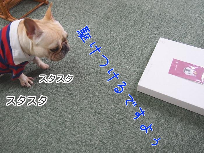 2014070917380584c.jpg